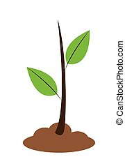 Young Plant - Vector illustration of a young plant with two ...