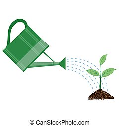 Young plant with watering can