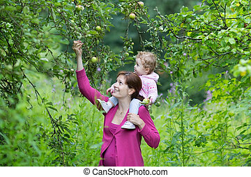 Young pregnant mother walking in an apple garden with her...