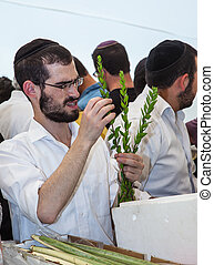 Young religious man chooses ritual myrtle - adas