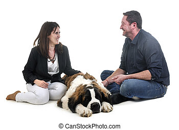 young saint bernard and owners in front of white background