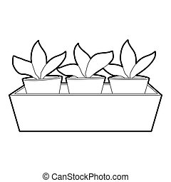 Young sprout seedlings in a flower box icon