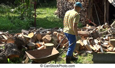 Young strong worker man load chopped wood to rusty barrow. 4K