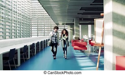Young students in a library. - Young students walking in a...