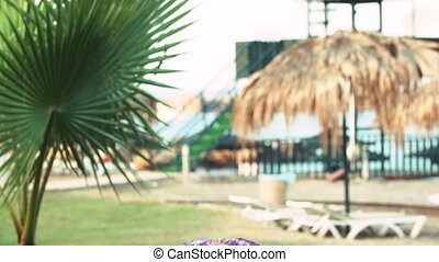 young tanned woman with long hair under tropical palm trees...