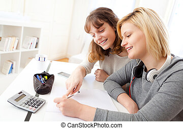 Young teacher assist a student during her homework - View of...