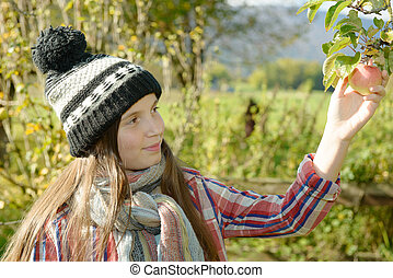 young teenager picking apples in the garden