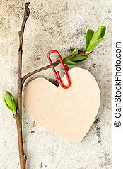 Young tree branch with paper heart