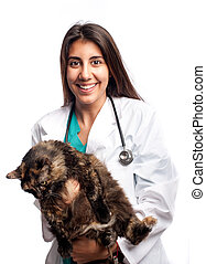 young veterinarian holding a cat