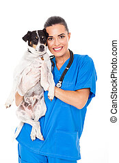 young female veterinarian holding a dog isolated on white background