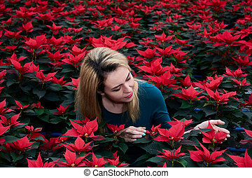 young woman among many red poinsettia flowers chooses one of them in a plant nursery