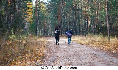 Young woman and a boy on scandinavian walk in the forest....