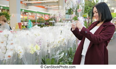 Young woman as customer shopping in flower shop, buying flowers for hobby and gardening, taking picture with mobile phone. Happy buyer in greenhouse