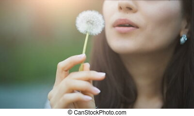 Young Woman Blow on a Dandelion - Woman blowing dandelion...