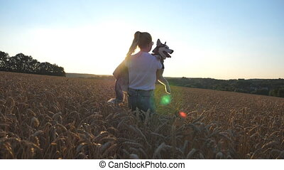 Young woman carrying on hands siberian husky dog and spinning her around among the spikelets at meadow. Happy girl in sunglasses circling pet in her arms on wheat field at sunset. Close up Slow motion