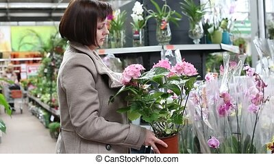 Young woman choosing and shopping flowers