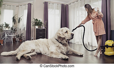Young woman cleaning big dog - Young woman cleaning big cute...