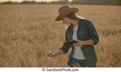 Young woman farmer working with tablet in field at sunset. The owner of a small business concept