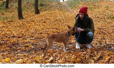 Young woman feeding cute dog in autumn park