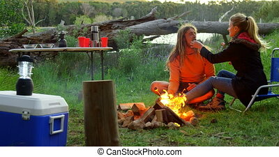 Young woman feeding man with marshmallow near campfire 4k - ...
