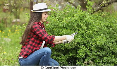 gardener trimming bush - young woman gardener trimming bush ...