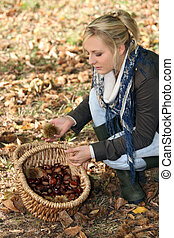 Young woman gathering chestnuts