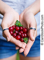 Young woman hands holding berries. Healthy food concept.