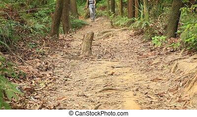young woman hiker tying shoelace - young woman hiker tying...