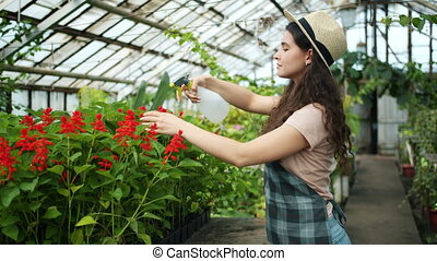 Young woman in apron and hat spraying water on plants in...