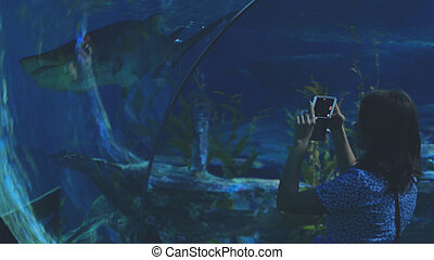 Young woman in the aquarium watching an exotic fish taking video with mobile phone at a shark