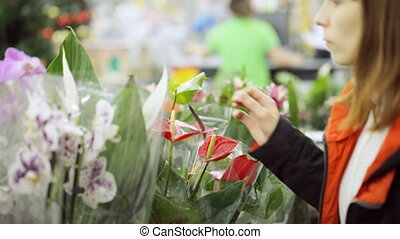 Young woman is choosing flowers at shop