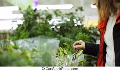 Young woman is choosing plant at shop