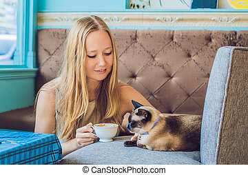 Young woman is drinking coffee and stroking the cat Against the backdrop of the sofa scratched by cats