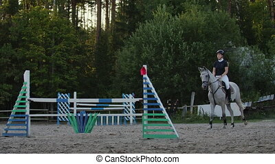 Young woman jumps horse over an obstacle during her training...