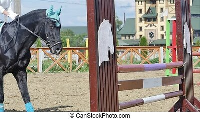 Young woman jumps horse over an obstacle during an event in an arena slow motion