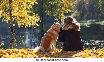 Young woman on a walk with her dog breed Akita inu. ...