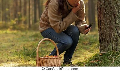 picking season, leisure and people concept - young asian woman with basket and knife cutting chanterelle mushroom in autumn forest