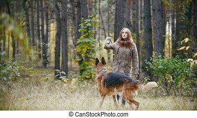 Young woman playing with a shepherd dog in autumn forest - throws a stick towards the camera, slow motion