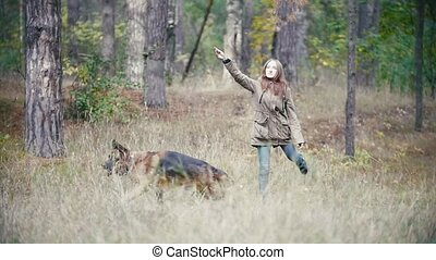 Young woman playing with a shepherd dog in autumn forest - runs for the thrown stick, slow motion