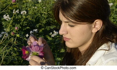 Young woman plucks petals cosmos
