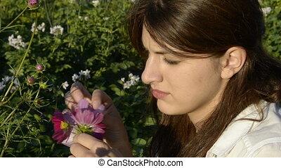 Young woman plucks petals cosmos
