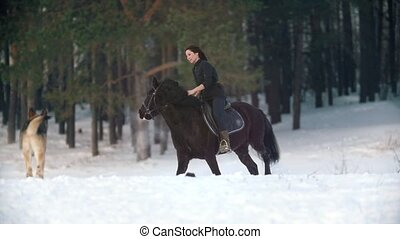 Young woman riding a black horse through the deep snow in...