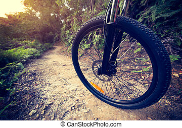 young woman riding mountain bike at forest trail