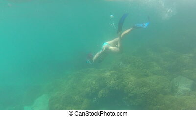 Young woman snorkeling - Young woman free diving in apnea in...