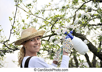 Young woman spraying apple tree