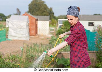 Young woman sprinkling water in an allotment