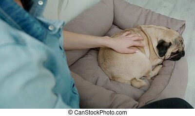 Young woman stroking her dog sitting on the floor.