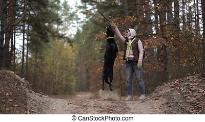 Young Woman Training Her Dog In The Autumn Forest