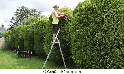Young Woman Trimming a hedge - HD - A young woman cutting a...