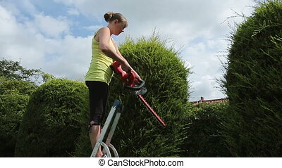 Young Woman Trimming her Bush - HD - A young woman cutting a...